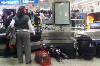 Tunisie des mesures pour lutter contre le vol de bagages - Office de l aviation civile et des aeroports tunisie ...