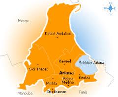 Tunisie – L'Ariana: Des salafistes attaquent un vendeur clandestin de vin