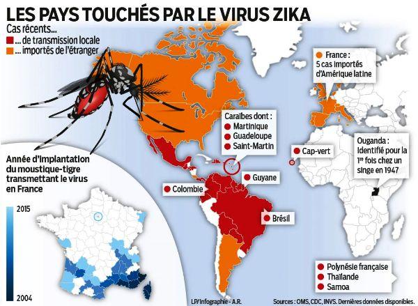 Carte Du Monde Zika 2017.Virus Zika Le Risque Est Il Reellement Insignifiant Pour