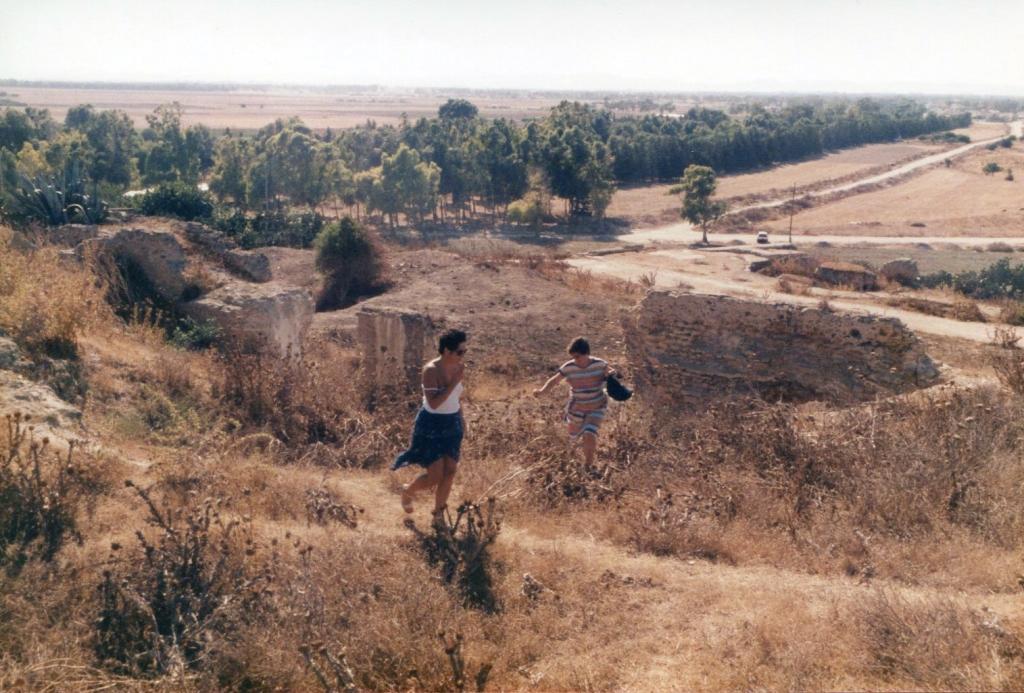 Kasserine : un entrepreneur détruit un site archéologique pour construire une route