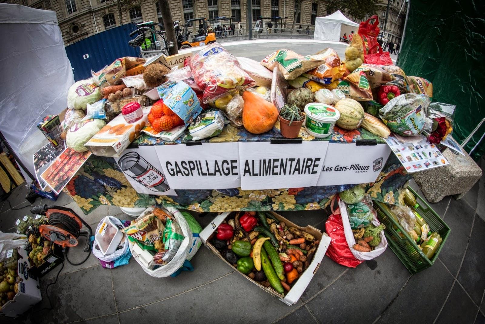 18% des dépenses alimentaires des tunisiens vont à la poubelle