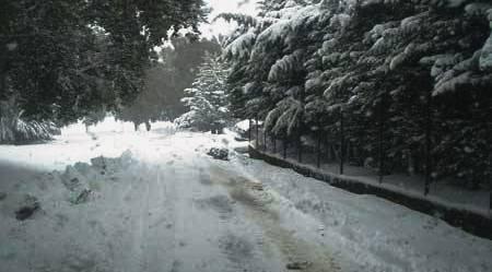 Tunisie – Aid Draham : Des routes coupées et des excursionnistes bloqués hébergés par les autorités