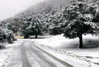 Tunisie – Ain Draham : 4 cm de neige ce matin