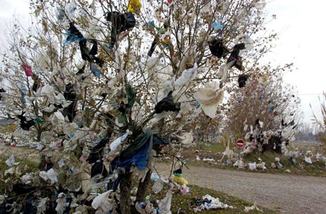 Tunisie : les grandes surfaces ne fourniront plus à leurs clients des sacs en plastique