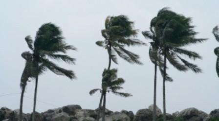Tunisie: L'INM: Un vent violent est attendu