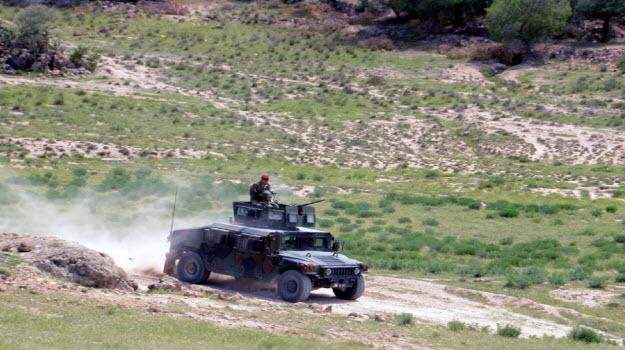 Tunisie-Kasserine: Un groupe terroriste agresse deux bergers et leur dérobe deux moutons