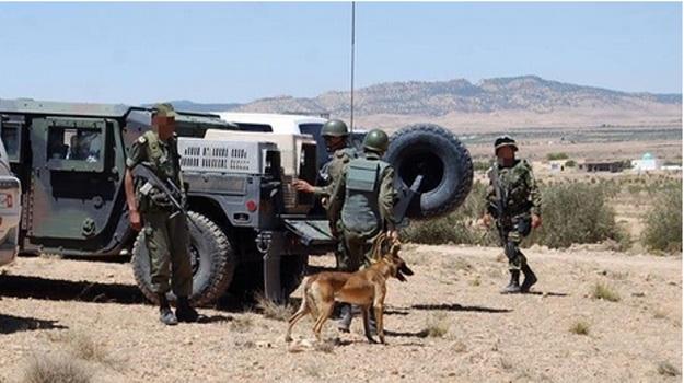 Tunisie: Opération militaire d'envergure à Kasserine avec un appui aérien