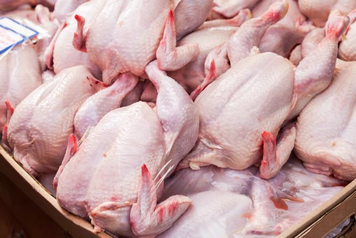 L'UTAP appelle les éleveurs de poulets à réduire la production de 50%