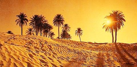 Tunisie – Canicule: Deux villes tunisiennes au palmarès des records de températures enregistrées dans le monde