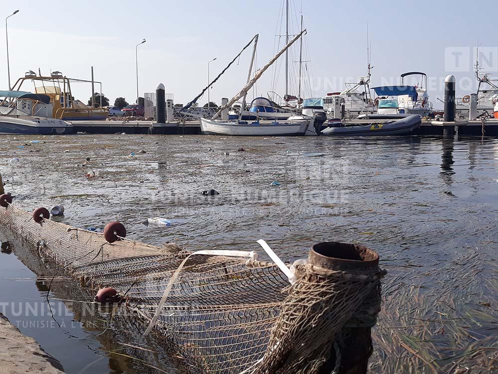 Tunisie [Photos]: Le port de plaisance de Djerba envahi par les ordures