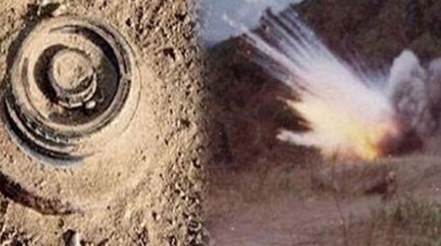 Tunisie: Décès de deux  frères dans l'explosion d'une mine au passage de leur voiture près du Mont Chaâmbi