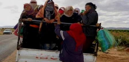 Tunisie – Enfin… Les autorités réagissent face au transport illégal des ouvrières agricoles