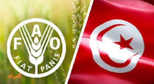 La Tunisie élue membre du Conseil de la FAO