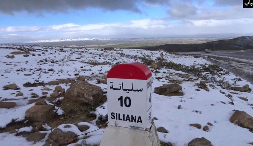 Tunisie : Le gouvernorat de Siliana se prépare pour affronter la nouvelle vague de froid