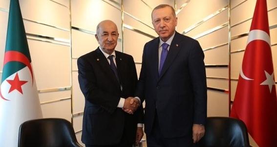 Erdogan suscite (encore une fois) le mécontentement des algériens