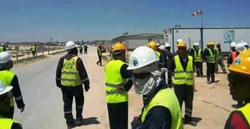 Tunisie: Le personnel de la compagnie OMV en grève de trois jours