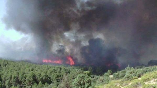 Tunisie: L'armée intervient par voie aérienne pour lutter contre un incendie à Gardiamou