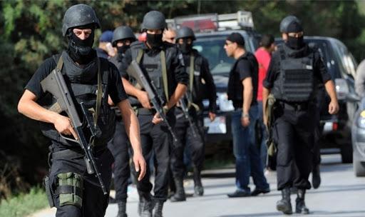 Tunisie: Des plans d'opérations terroristes contre des sites touristiques, déjoués