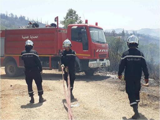 Tunisie: 115 interventions pour éteindre des incendies pour la seule journée de mercredi