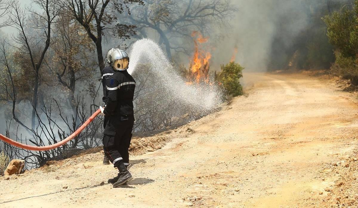 Tunisie: 438 incendies considérés comme criminels ayant ravagé 1958 ha de forêts