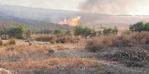 Tunisie: Sept incendies maîtrisés en 48 heures dans le gouvernorat de Bizerte