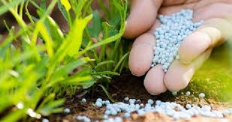 Tunisie: Le ministère de l'Agriculture reconnaît l'existence d'un problème au niveau des engrais