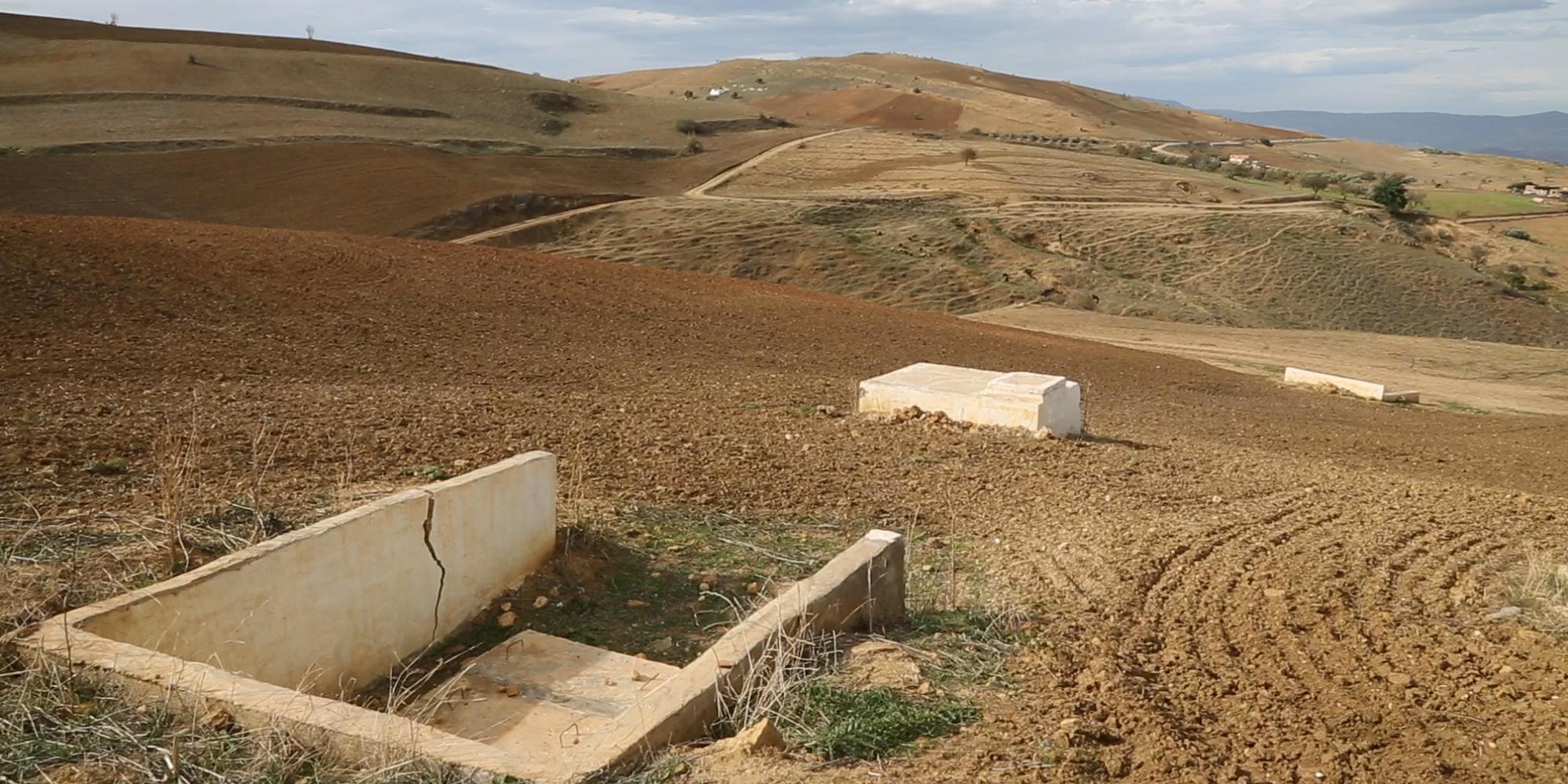 Autorités et union tunisienne de l'agriculture et de la pêche lâchent 1.580 million de petits agriculteurs…