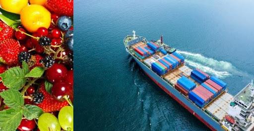 Tunisie: Exportation de 3.000 tonnes de fruits vers la Libye au cours des 20 jours d'octobre