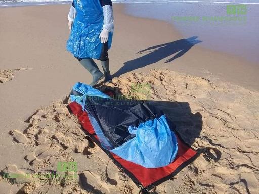 Tunisie: En images, découverte d'un corps sur une plage à Nefza