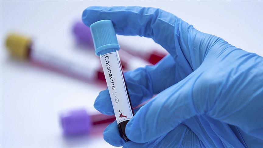 Coronavirus : La situation épidémiologique à Kasserine