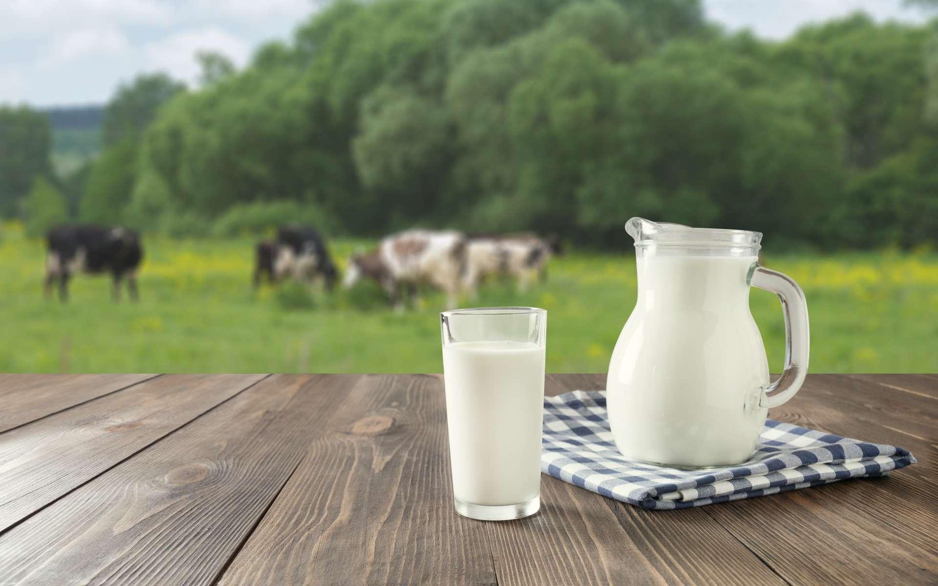 Tunisie: Augmentation du prix du litre de lait