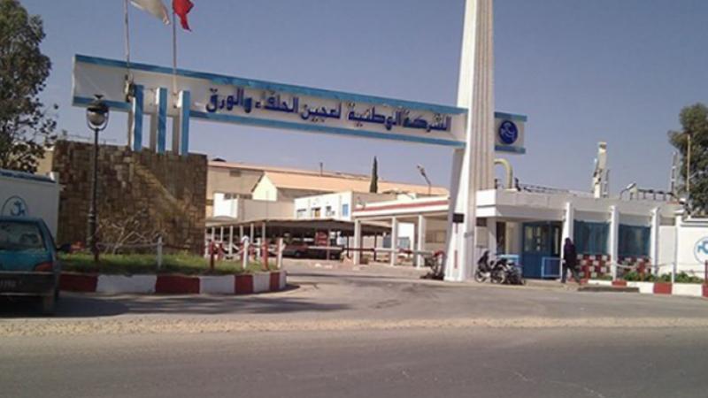 Tunisie: Grève à la société nationale de cellulose et de papier alfa (SNCPA)
