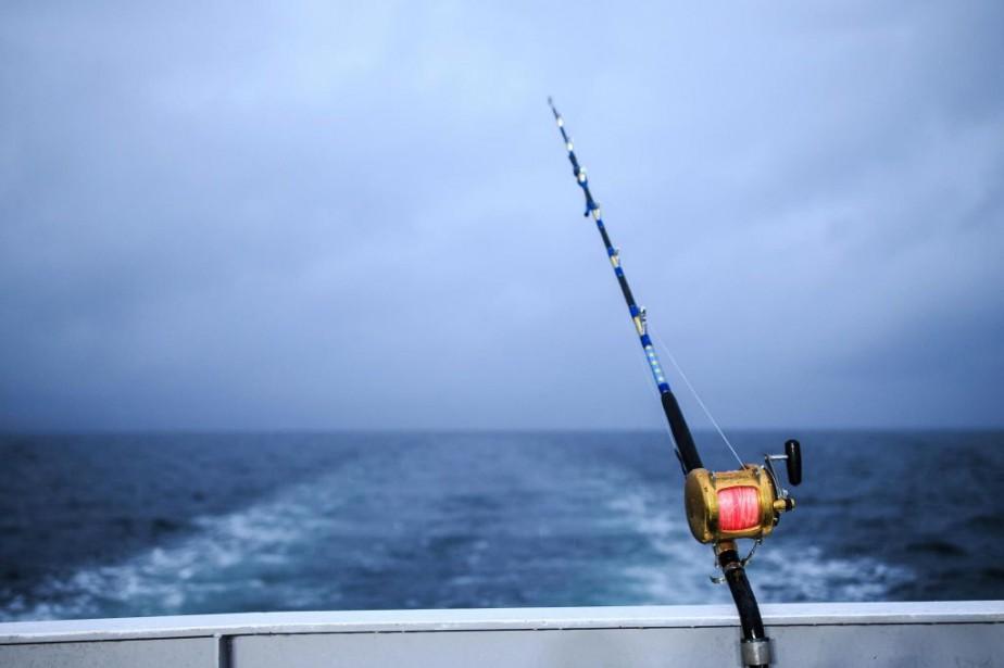 Tunisie: 13 pêcheurs tunisiens arrêtés en Libye