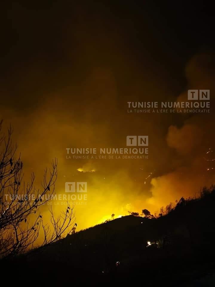 Jendouba [PHOTOS] : Plusieurs maisons décimées par des incendies à Ghardimaou