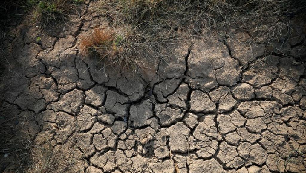 Changements climatiques: Une menace sérieuse qui plane sur l'économie