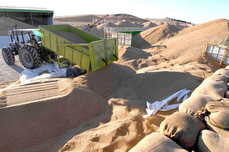 Dernière minute – L'explosion des importations des céréales fait tripler le déficit alimentaire en Tunisie !