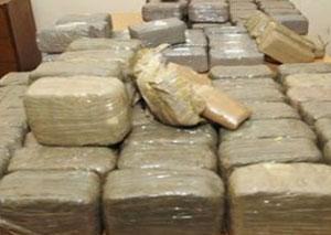 Tunisie: Saisie de 650 kg de Cannabis à Tozeur