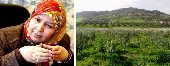 Tunisie – Le miracle Mehrezia Laâbidi, ou comment acheter 3 hectares à Grombalia pour 13 000 DT