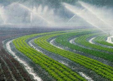 La 2ème édition du Forum d'Alger consacrée à l'eau et à l'autosufffisance alimentaire se tiendra le samedi 2 Juin à 9 heures à l'hotel SOFITEL - ALGER Soci%C3%A9t%C3%A9-dExploitation