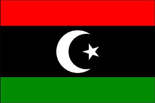A l'unanimité, le Conseil de sécurité de l'ONU endosse les progrès libyens