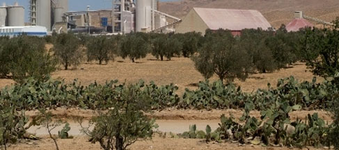 Tunisie : 11 des ex- prisonniers politiques de la région de Kasserine entament une grève de la faim